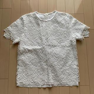 ルシェルブルー(LE CIEL BLEU)の値下げします!ルシェルブルー レースTシャツ(Tシャツ(半袖/袖なし))