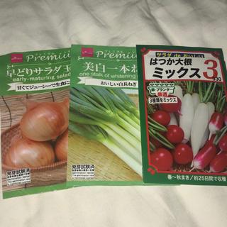 玉ねぎ 太ねぎ 二十日大根(野菜)
