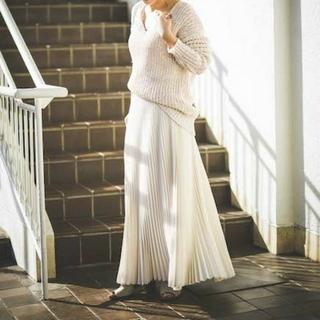 ツルバイマリコオイカワ(TSURU by Mariko Oikawa)のツルバイマリコオイカワ スカート34(ロングスカート)