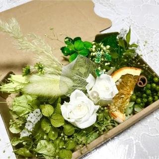 グリーングリーンホワイトローズ*ハーバリウム花材ドライフラワー 花材(ドライフラワー)