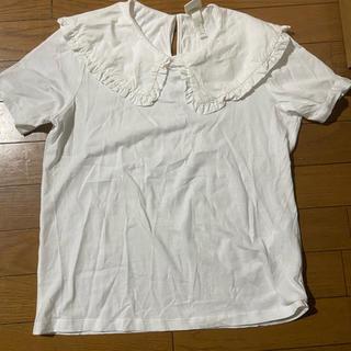 エイチアンドエイチ(H&H)のH&M襟付きティシャツ(Tシャツ(半袖/袖なし))