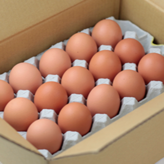 NEW!平飼い農家のちっちゃな庭先卵30個(その他)