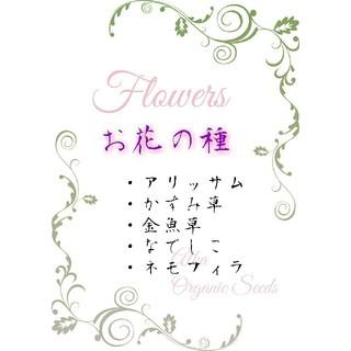 お花の種 野菜の種 ハーブの種 エディブルフラワーなども❗(野菜)
