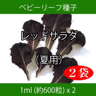 ベビーリーフ種子 B-15 レッドサラダ(夏用) 1ml 約600粒 x 2袋(野菜)