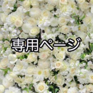 専用ページ(9/12)(その他)