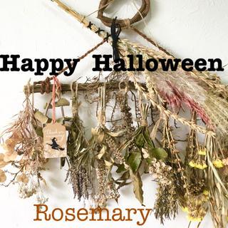 香り立つ無農薬Happy Halloween ハロウィンローズマリー木ガーランド(ドライフラワー)