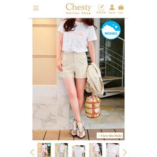 チェスティ(Chesty)の新品未使用 chesty パリTシャツ サイズ0(Tシャツ(半袖/袖なし))