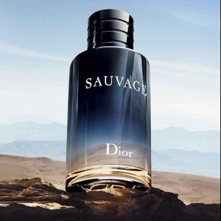 クリスチャンディオール(Christian Dior)の新品未使用 クリスチャンディオール  ソヴァージュ (香水(男性用))