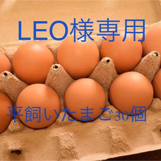 LEO様専用 平飼いたまご30個(野菜)