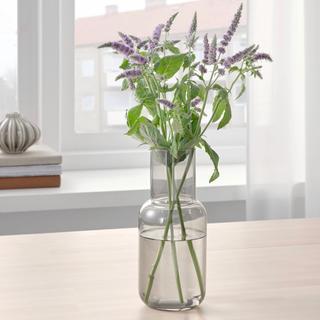 イケア(IKEA)のイケア IKEA 花瓶 ガラス 北欧 アンティーク フラワーベース(花瓶)