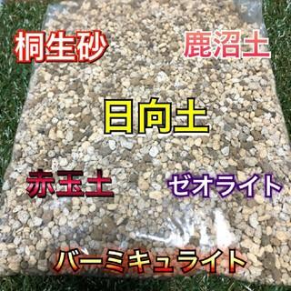 多肉植物 サボテン 土(その他)