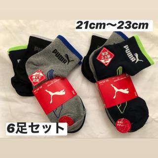 プーマ(PUMA)のプーマ 靴下 ソックス 21cm〜23cm (靴下/タイツ)
