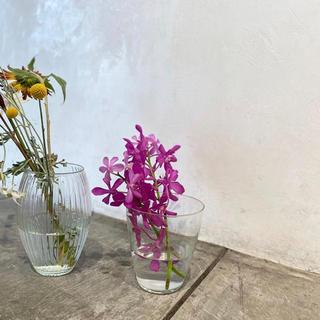 アクタス(ACTUS)のlife's フラワーベース(花瓶)
