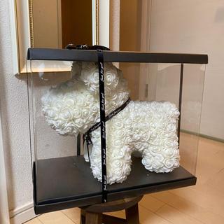 フラワードール(dog ホワイト)(その他)