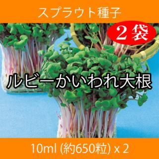 スプラウト種子 S-06 ルビーかいわれ大根 10ml 約650粒 x 2袋(野菜)