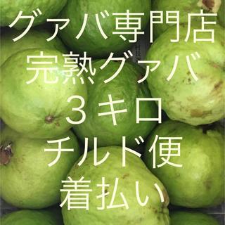 完熟グァバ 3キロ2500円 チルド便着払い(フルーツ)
