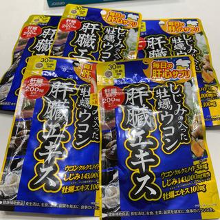 アサヒ - 井藤漢方製薬 しじみの入った牡蠣ウコン肝臓エキス 120粒X5⃣️