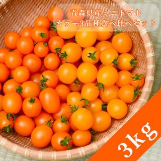 ミニトマト【農学博士のDr.トマトカロテンプラス3Kg】☘️〜青森津軽産〜(野菜)