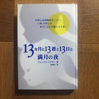 13カ月と13週と13日と満月の夜(文学/小説)