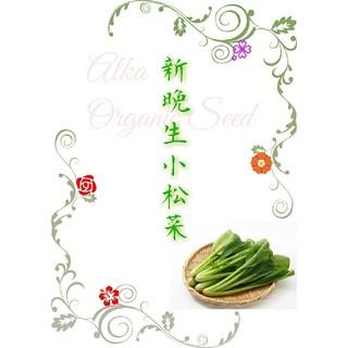 新晩生小松菜 固定種 有機種子 野菜の種 ハーブの種 家庭菜園 水耕栽培(野菜)