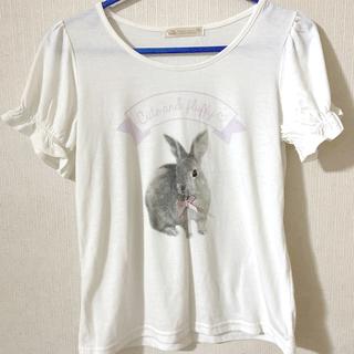 アンクルージュ(Ank Rouge)のAnk Rouge ラビット Tシャツ(Tシャツ(半袖/袖なし))
