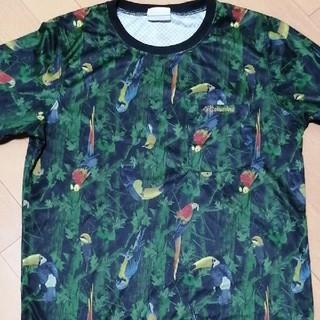 コロンビア(Columbia)のコロンビア期間限定tシャツ(Tシャツ/カットソー(半袖/袖なし))