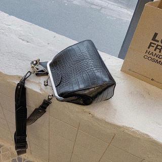ディーホリック(dholic)の【完売品】nokcha 2way bag がま口(ショルダーバッグ)