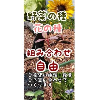 野菜・花の種 選んでおつくりいたします 自然農の種多数あり(野菜)