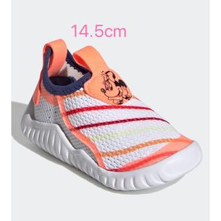 アディダス(adidas)の新品 スニーカー 14.5(スニーカー)