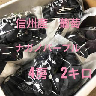 信州産 葡萄 ナガノパープル  4房2kg (フルーツ)