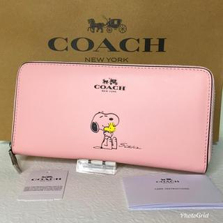 コーチ(COACH)のコーチ 長財布 スヌーピー  ピンク  【新品】(財布)