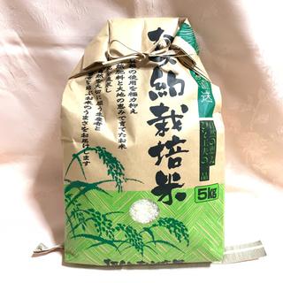 【訳あり】【なくなり次第終了】胴割れ米 ひとめぼれ(米/穀物)
