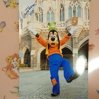 ディズニー(Disney)のグーフィー 2020年スペシャルフォト(キャラクターグッズ)