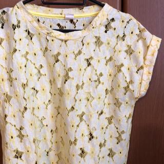 ジーナシス(JEANASIS)のTシャツ カットソー(Tシャツ(半袖/袖なし))
