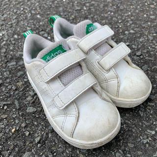 アディダス(adidas)の子供 アディダス 14cm(スニーカー)