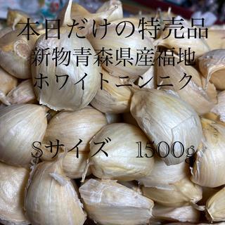新物 青森県産福地ホワイトニンニク Sサイズ1500g(野菜)