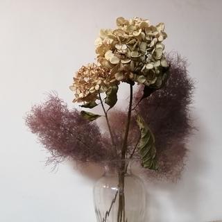 紫系ドライスモークツリーと秋色紫陽花(ドライフラワー)