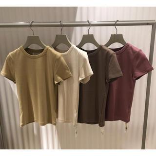 スナイデル(snidel)のオーガニックカラーTシャツ(Tシャツ(半袖/袖なし))
