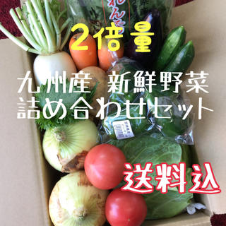 九州産 新鮮野菜 詰め合わせセット 2倍量(野菜)