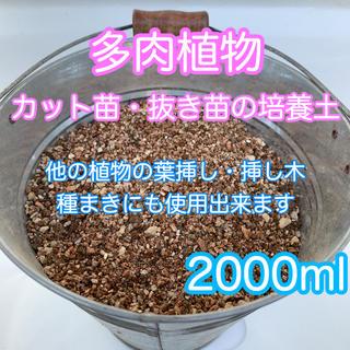多肉植物の土 サボテンの土 多肉植物用土 2000ml(その他)