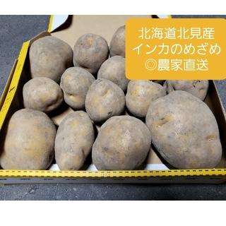 北海道 北見産 新じゃがいも インカのめざめ ◎農家直送(野菜)