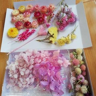 週末saleピンクパープル系のアジサイとヘリクリサム 千日紅スターチス花材セット(ドライフラワー)