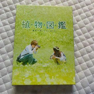サンダイメジェイソウルブラザーズ(三代目 J Soul Brothers)の植物図鑑 運命の恋、ひろいました 豪華版(初回限定生産) DVD(日本映画)