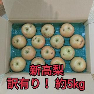 千葉県産 梨 新高 訳有り家庭用 約5kg(フルーツ)