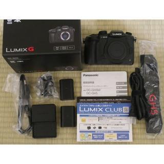 Panasonic - 【美品】パナソニック ミラーレス一眼カメラ ルミックス GH5 ボディ おまけ付