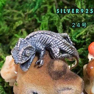 カメレオン 銀 シルバー925リング 指輪 爬虫類 蜥蜴 トカゲ 永遠 希望(リング(指輪))