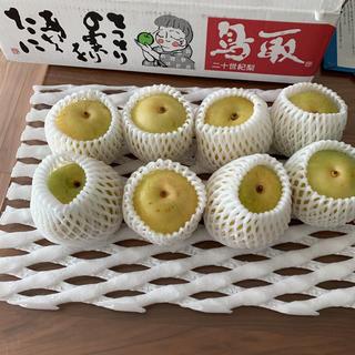 売り切れました‼︎鳥取県産⭐︎二十世紀梨(フルーツ)