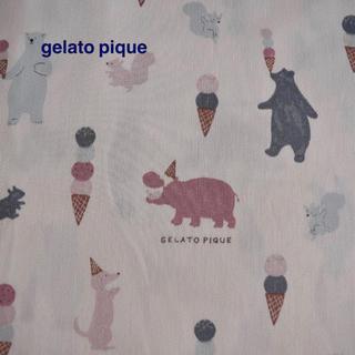 ジェラートピケ(gelato pique)の100cm ジェラートピケ アニマルアイス柄 コットン 布 生地 熊 犬 リス(生地/糸)
