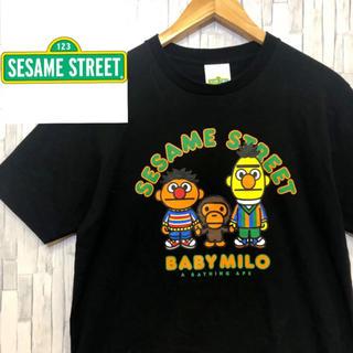 【Sesame Street 】 セサミストリート Tシャツ BABY MILO