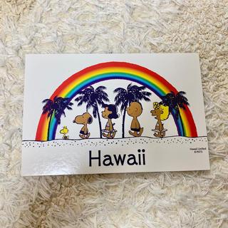 スヌーピー(SNOOPY)のハワイ スヌーピー ポストカード(その他)